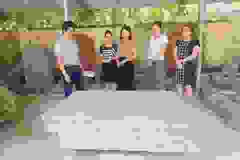 Phát hiện sập đá nhiều nét giống sập đá bảo vật quốc gia ở Ninh Bình