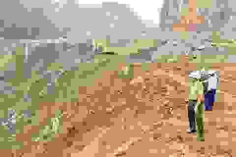 Cần khởi tố hình sự doanh nghiệp tàn phá 32.000m2 rừng?