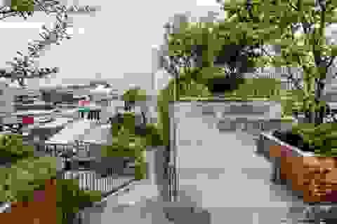 """Làm công viên trên sân thượng, gia đình Sài Gòn có góc """"sống ảo"""" tuyệt đẹp"""