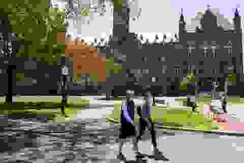 Đại học Mỹ điều chỉnh hình thức dạy sau tin trục xuất sinh viên quốc tế