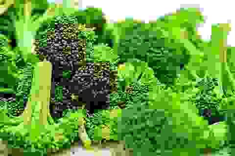 Thường xuyên ăn súp lơ xanh để bảo vệ cơ thể trước 6 loại ung thư phổ biến