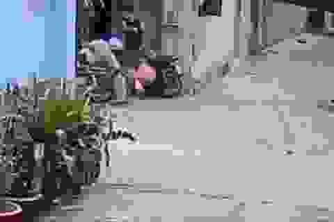 Con trai đánh cả cha lẫn mẹ khi được gọi vào ăn cơm