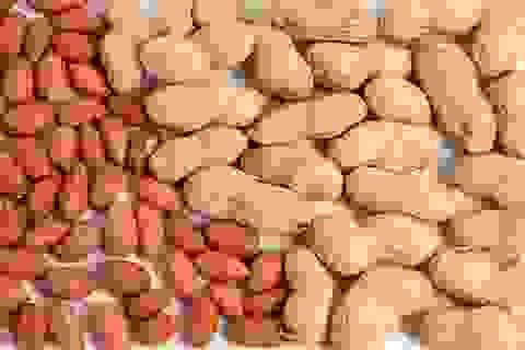 Món nhâm nhi của dân nhậu lại là thực phẩm bảo vệ tim mạch, chống ung thư