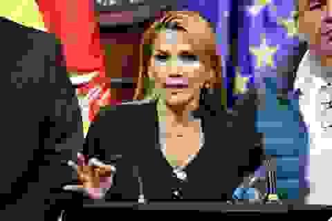 Tổng thống Bolivia và 7 bộ trưởng mắc Covid-19