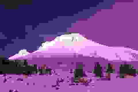 Tuyết hồng kỳ thú trên đỉnh núi Alps là dấu hiệu rất xấu của môi trường