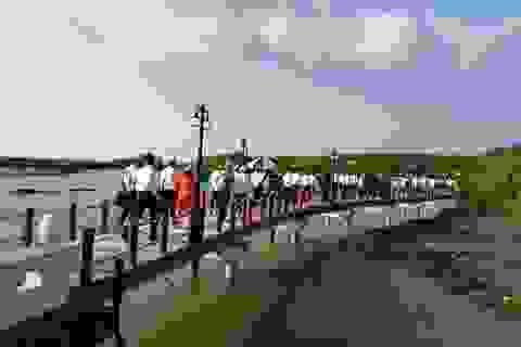 Học sinh, giáo viên Cà Mau được ưu đãi khi vào khu du lịch Mũi Cà Mau