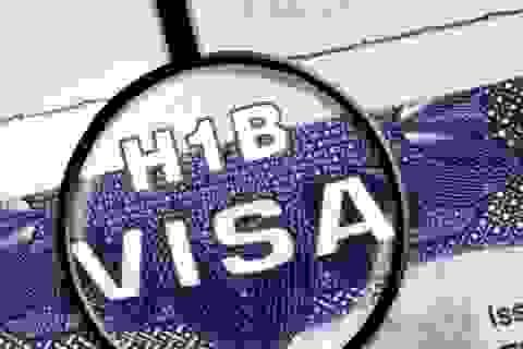 """""""Giấc mơ Mỹ"""": Sự thật về du học, đi làm, và H1B visa"""