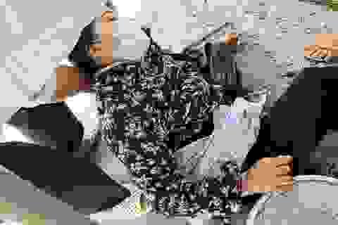 Hà Nội: Tranh giành khách mua hàng, người phụ nữ bị đâm trọng thương