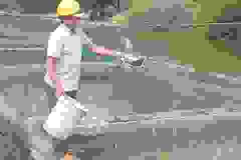 Lên Tây Nguyên xem lão ngư nuôi cá đặc sản tiến vua, thu 500 triệu đồng/năm