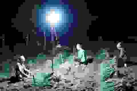 """Nghệ An: Nắng nóng đỉnh điểm,  nông dân """"chong đèn"""" nhổ hành xuyên đêm"""