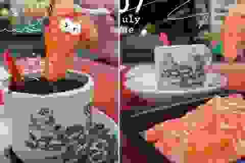 Ăn cá hồi sống chấm cà phê ở Malaysia gây sốt mạng xã hội