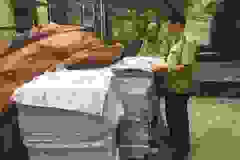 Hà Nội: Cận cảnh xưởng in sách có dấu hiệu in lậu vừa bị phát giác