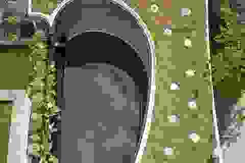Độc đáo căn biệt thự đổ đất trồng cây xanh trên mái nhà để tránh nóng