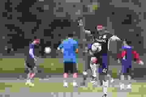 Các đội bóng ráo riết tăng cường lực lượng: V-League hứa hẹn căng thẳng