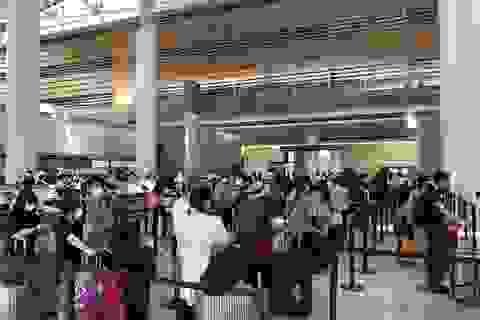 Cụ ông 70 tuổi người Việt tử vong trên chuyến bay hồi hương từ Mỹ
