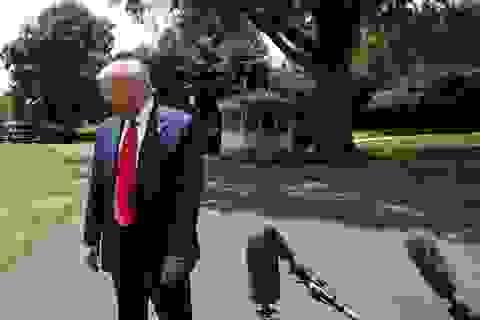 Ông Trump lần đầu tiên bị ông Biden dẫn trước ở lĩnh vực kinh tế