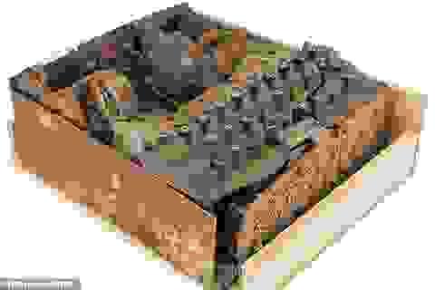 Cỗ máy mã hóa hiếm hoi từ Thế chiến II được rao bán hơn 460 triệu đồng