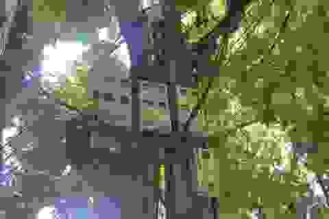 Hà Nội: Tiền điện tăng bất thường vì bị đấu nhầm công tơ… hàng xóm