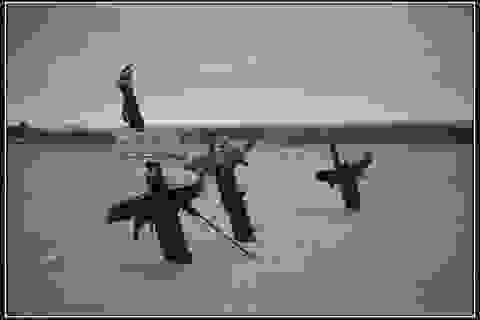 Tàu đắm chở hàng nghìn bom có thể gây sóng thần ở Anh