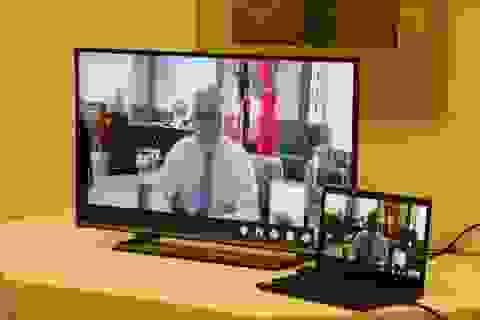 Quốc vụ khanh Anh thảo luận kết nối khoa học và kinh doanh với Việt Nam