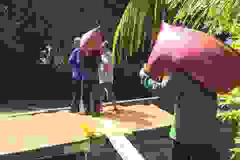 Vào vụ mùa, nghề vác lúa kiếm hơn nửa triệu mỗi ngày ở miền Tây