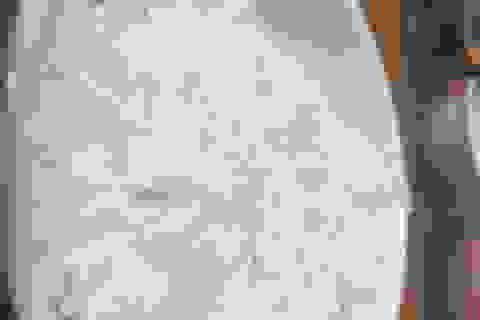 Nhà giàu Hà Nội đặt mua cả trăm cân gạo Séng Cù ăn dần