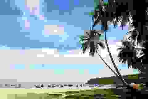 Xã đảo Tam Hải có tên trong 5 bãi biển đẹp nhất phía Nam