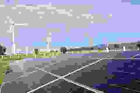 EVN tăng cường hỗ trợ các nhà máy điện mặt trời phát điện vận hành thương mại