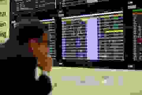 2 thập kỷ đầu tư chứng khoán, khối tài sản hơn 4 triệu tỷ đồng ở trên sàn