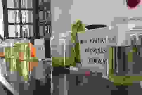"""Vụ xăng giả Trịnh Sướng: 1000 tỷ đồng mua dung môi, hóa chất """"chế"""" xăng!"""
