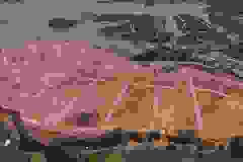 """Tổng cục Thủy lợi nói về việc doanh nghiệp đổ đất """"bức tử"""" hồ Đại Lải"""