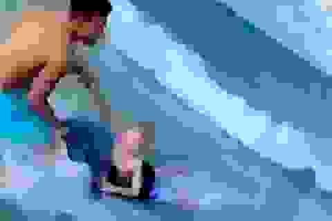 Bất ngờ bị cá mập tấn công, bé trai được cứu thoát trong gang tấc