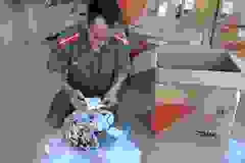 Tạm giữ lô hàng do nước ngoài sản xuất trị giá 400 triệu đồng không giấy tờ