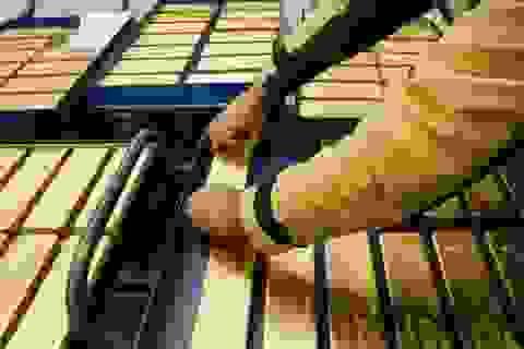 Đây là lý do thổi giá vàng tăng sốc 2 triệu đồng sau một đêm