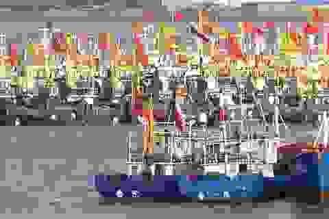 Đội tàu cá nghi của Trung Quốc đánh bắt trái phép trên biển Triều Tiên
