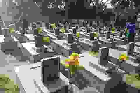 Quảng Ngãi:  Chăm vườn dừa tạo quỹ mua hoa viếng liệt sĩ