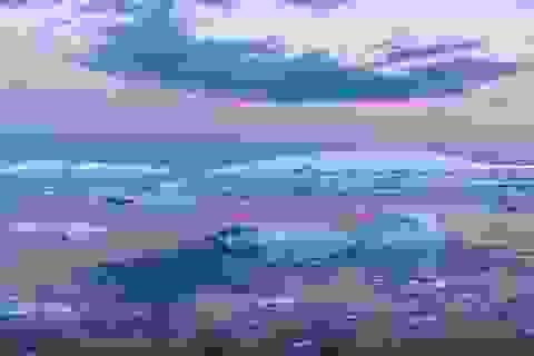 Tìm thấy hiểm họa đe dọa toàn bộ nền văn minh gần bờ biển Nam Cực