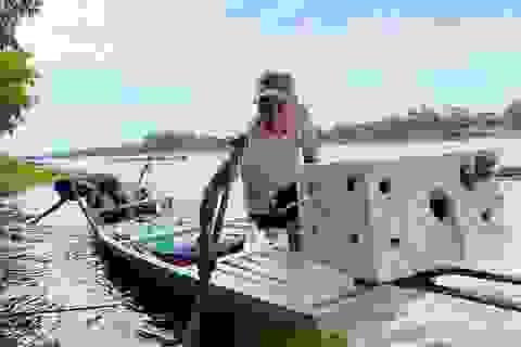 Thương binh hạng 1/4 làm giàu từ nuôi cá, thu lãi 100 triệu đồng/năm