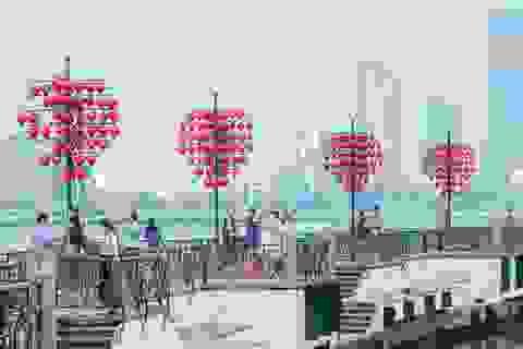 Ngành du lịch Đà Nẵng hỗ trợ du khách huỷ, hoãn tour do Covid-19