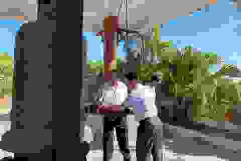 Phó Thủ tướng Trương Hoà Bình dâng hương tại Nghĩa trang Liệt sỹ Ba Dốc