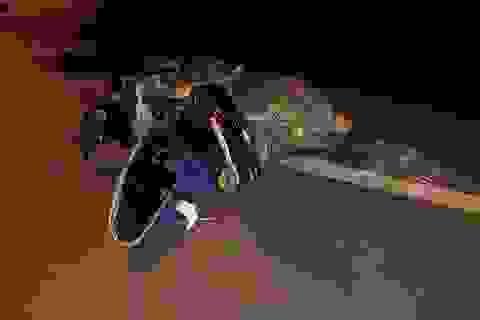 2 mẹ con bị ô tô tông tử nạn khi đang dừng chờ sang đường