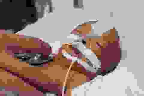 Bé trai bị bỏ rơi ở sân chùa: Cha mẹ vỡ oà đón nhận kết quả xét nghiệm ADN
