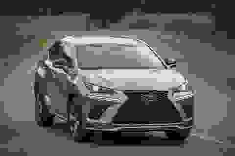 """Chủ xe Lexus NX 300 không cần """"sốt ruột"""" với phiên bản nâng cấp 2021"""