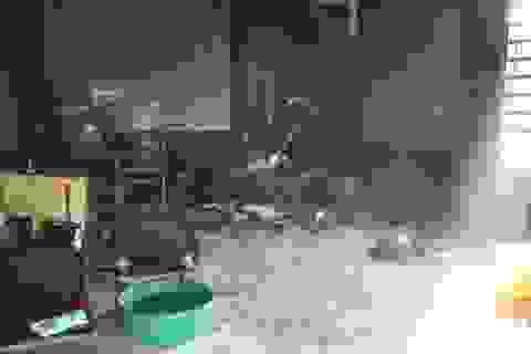 Vụ phóng hỏa khiến 3 con thơ tử vong: Người mẹ cũng không qua khỏi