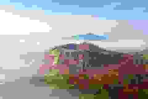 Việt Nam trong 50 bức ảnh phong cảnh đẹp nhất thế giới năm 2020