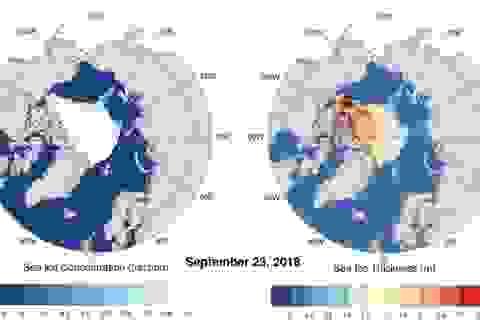Bắc Cực sẽ không còn băng trong vòng 30 năm nữa