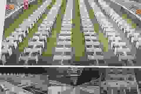 Bộ Xây dựng sẽ hỗ trợ Đà Nẵng xây dựng bệnh viện dã chiến