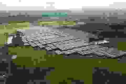 Tỉnh Đắk Nông truy quét, xử nghiêm các công trình điện mặt trời trái luật