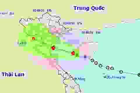 Sáng mai bão số 2 vào vùng biển ven bờ các tỉnh Thái Bình - Hà Tĩnh
