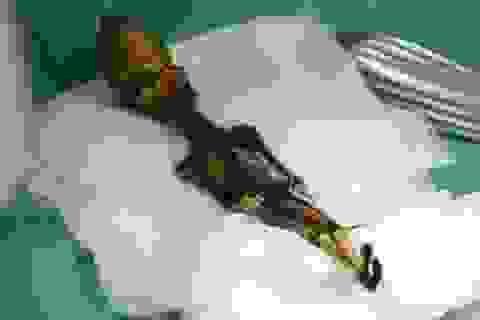 """Các nhà khảo cổ """"chết lặng"""" khi tìm thấy xác ướp bí ẩn giống người ngoài hành tinh"""